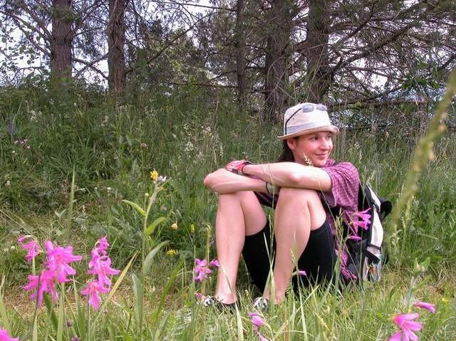 Gladiolenwiese640.jpg